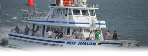 5 Hour Fishing Trip @ Miss Avalon | Avalon | New Jersey | United States